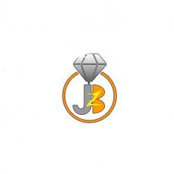Jewel Biz ERP– Single User...